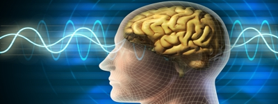 Влияние шума влияние звука влияние инфразвука на человека Влияние шума и звука на человека